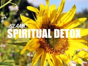 spiritualdetoxthumbnail-001