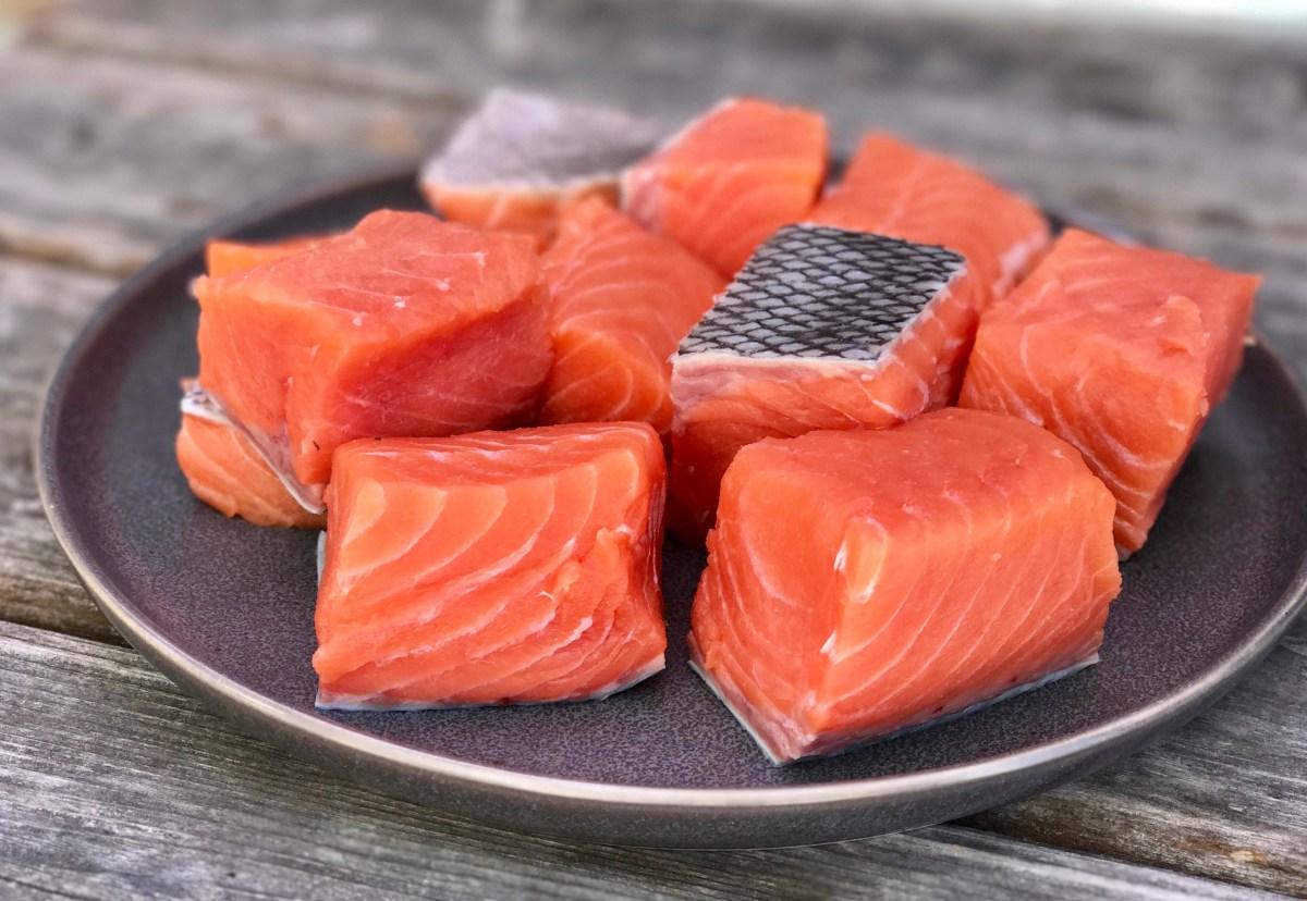 Salmon Fish Color Added – ALERT – Marina Farook